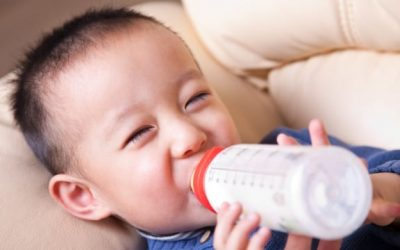 Bolehkah Memberikan Susu Kambing Untuk Bayi?